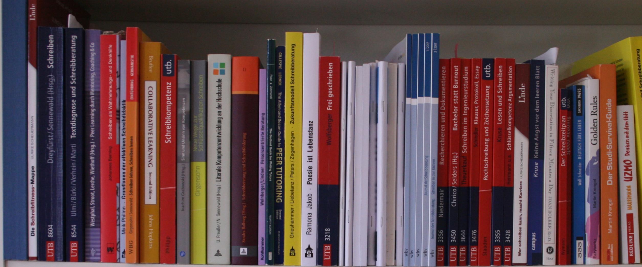 Bücherregal-Hildesheim-lesen
